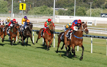 Go Thoroughbred Racing Tasmania