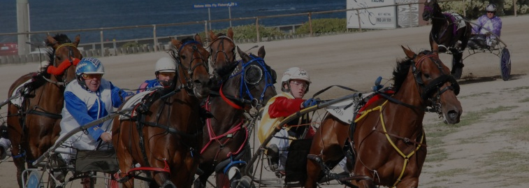 Burnie Harness Racing Club