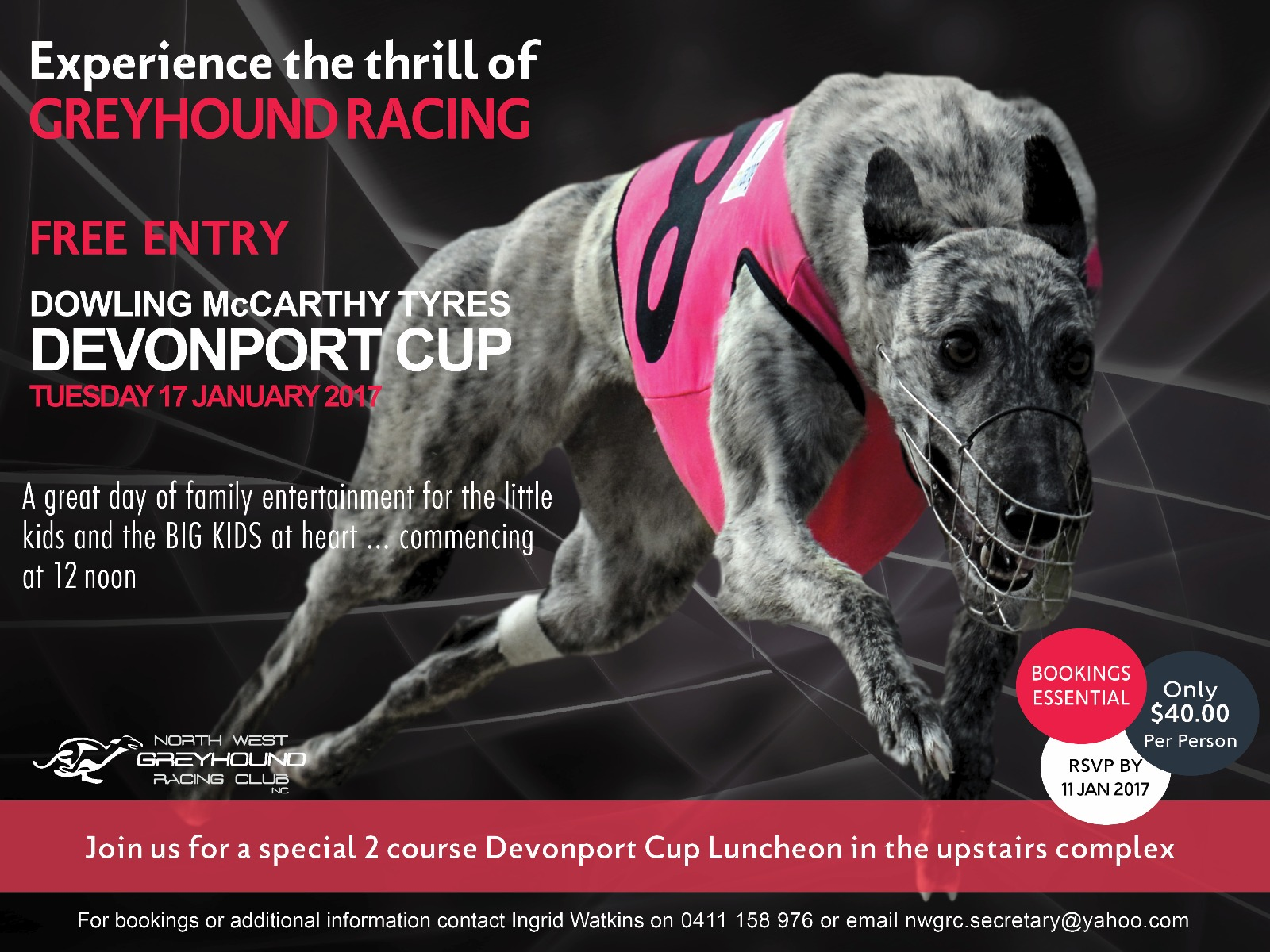 Dowling McCarthy Tyres Devonport Cup Greyhound Racing