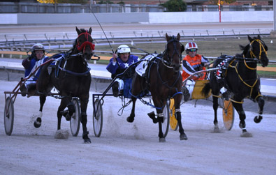 The Twilight Devonport Harness Racing Cup