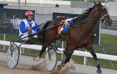 BOTRA Novice Driver's Championships Launceston Harness Racing