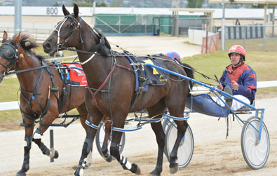Sunday Afternoon Light Harness Tasmanian Pacing Cup Hobart Harness Racing